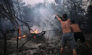 Φωτιά Βαρυμπόμπη: Έρευνα από την Εισαγγελία Αθηνών για τα αιτία της πυρκαγιάς