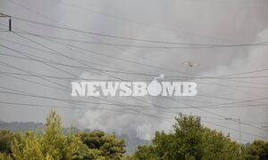 Φωτιά στη Βαρυμπόμπη - Νέο μήνυμα από το 112: «Εκκενώστε την Ιπποκράτειο Πολιτεία-Δροσοπηγή»