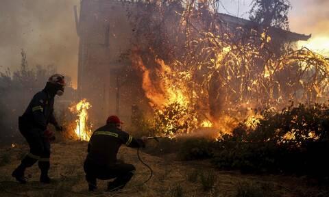 Κεγκέρογλου για τη φωτιά στην Εύβοια: «Το αίτημα ενίσχυσης με εναέρια μέσα, δεν έχει ικανοποιηθεί»