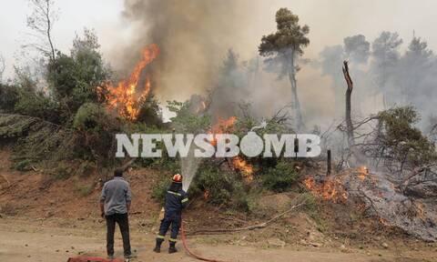Φωτιά: Δραματικές ώρες στην Εύβοια - Εκκενώνονται η Αγία Άννα και το Αγλάδι