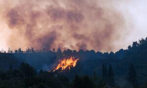 Φωτιά στην Αρχαία Ολυμπία: Δύο πολίτες και δύο πυροσβέστες με εγκαύματα και αναπνευστικά προβλήματα