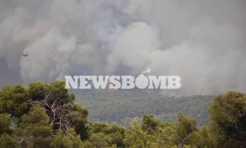 Προειδοποίηση Καλλιάνου: Εύχομαι να σβήσουν οι φωτιές στην Αττική - Αύριο έρχονται 8 μποφόρ