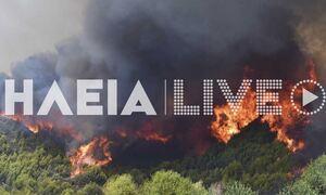 Φωτιά στην Ηλεία: Εφιάλτης! «Πάνω από 100 εγκλωβισμένοι στο χωριό Κλαδέος»