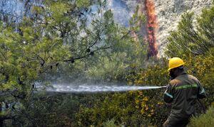 Φωτιά ΤΩΡΑ: Μεγάλη πυρκαγιά και στη Φωκίδα - Μήνυμα από το 112 για εκκένωση του χωριού Ελαία