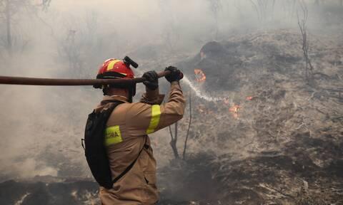 Φωτιά ΤΩΡΑ: Νέο πύρινο μέτωπο στην Ηλεία - Πυρκαγιά στη Ζαχάρω