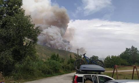 Nέα μεγάλη πυρκαγιά στον Σμόλικα - Εκκενώνεται το χωριό Πάδες