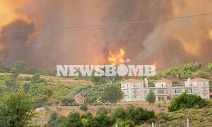 Φωτιά ΤΩΡΑ: Εκκενώνονται Κρυονέρι, Αφίδνες και Κοκκινόβραχος - Τετάστιο το μέτωπο της πυρκαγιάς