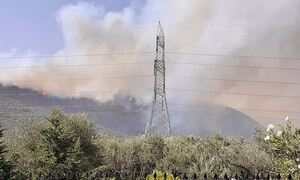 Φωτιά ΤΩΡΑ: Ανεξέλεγκτη η πυρκαγιά στην Φωκίδα - Καίγονται σπίτια, στα 6 χιλιόμετρα το μέτωπο