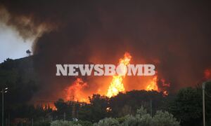 Φωτιά ΤΩΡΑ: Στην Εθνική Οδό οι φλόγες – Καίγονται σπίτια στις Αφίδνες - Απειλούνται και τα διόδια