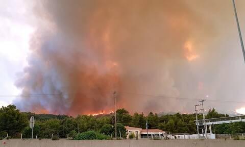 Συγκλονιστική ανάρτηση υποπυραγού για τις πυρκαγιές! «Όταν ο άνθρωπος βιάζει τους κανόνες της φύσης»