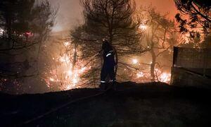 Φωτιά: Δραματικό βράδυ - Εκκενώνονται Άγιος Στέφανος, Πολυδένδρι, Καπανδρίτι