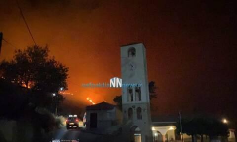 Φωτιά στη Φωκίδα: Εκκενώνεται το χωριό Τολοφώνα - Χτύπησαν οι καμπάνες να φύγει ο κόσμος (vid)