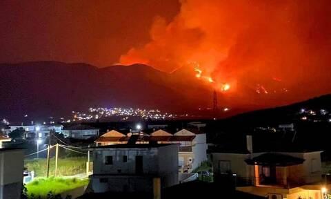 Φωτιά ΤΩΡΑ στη Φωκίδα: Τεράστιο το μέτωπο της πυρκαγιάς - Πάνω από 8 χιλιόμετρα
