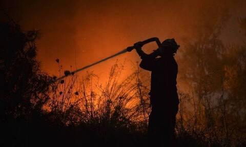 Φωτιά στο Λασίθι: Σε ύφεση η πυρκαγιά στην περιοχή Καστέλλι - Διακοπές ρεύματος στον Άγιο Νικόλαο