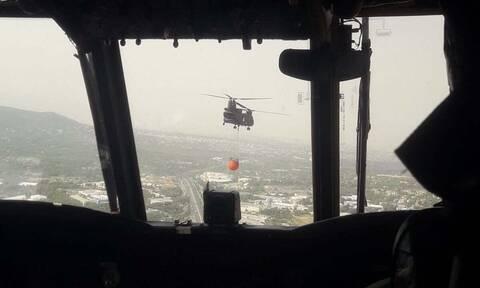Φωτιά ΤΩΡΑ: Πολύτιμη βοήθεια των Ενόπλων Δυνάμεων - Ολονύχτια μάχη στα πύρινα μέτωπα