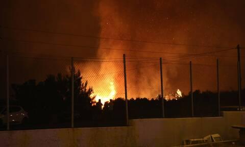 Φωτιά Τώρα: «Έχουν καεί σπίτια σε Δροσοπηγή, Αφίδνες και Ιπποκράτειο Πολιτεία»