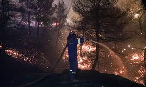 Φωτιά στη Μάνη: Εκκενώνεται το χωριό Καρβελάς - Δύσκολη η νύχτα