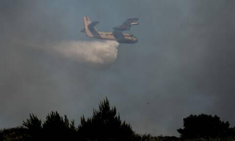 Φωτιά ΤΩΡΑ: Έρχεται βοήθεια από ξένες χώρες - Αδύνατον να ελεγχθούν οι πυρκαγιές