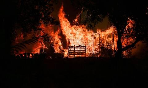 Η Ελλάδα στις φλόγες