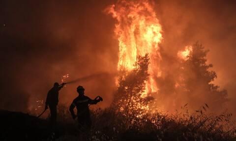 Φωτιά στη Μάνη: Προληπτική εκκένωση επτά κοινοτήτων λόγω της πυρκαγιάς στην περιοχή Καστάνια