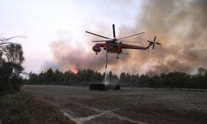 Φωτιές στην Ελλάδα: Σε εξέλιξη πέντε μεγάλα πύρινα μέτωπα στη χώρα - Η ενημέρωση της Πυροσβεστικής