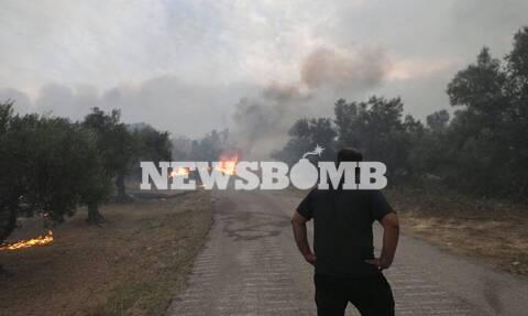 Ανεξέλεγκτη η φωτιά στην Εύβοια: Εκατοντάδες απεγκλωβισμοί πολιτών – Αγώνας για να σωθεί το Μαντούδι