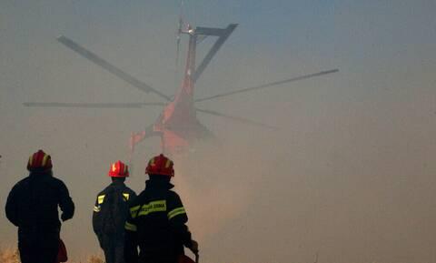 Φωτιές στην Ελλάδα: Αναλυτικά οι πυροσβεστικές δυνάμεις επιχειρούν στα πύρινα μέτωπα