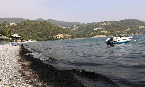 Φωτιά στην Εύβοια: Η παραλία που «βάφτηκε» στα μαύρα