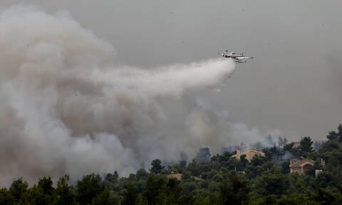 Φωτιά στην Αττική: Άνεμοι και αναζωπυρώσεις δυσχεραίνουν το έργο των πυροσβεστών