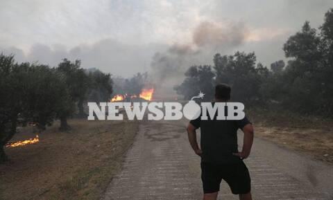 Φωτιά στην Αχαΐα: Χειροπέδες σε φερόμενο εμπρηστή