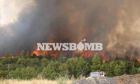 Φωτιά στην Αττική: Συνεχείς αναζωπυρώσεις και εκρήξεις - Σε πύρινο κλοιό το Κρυονέρι