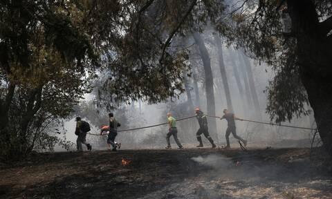 Φωτιά Ηλεία: Δύο πυροσβέστες στο νοσοκομείο του Πύργου - Ανατράπηκε το όχημά τους