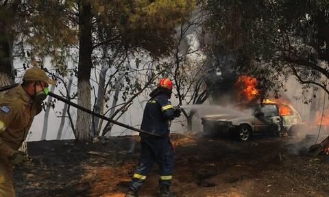 Το μήνυμα του ΠΑΟΚ για τις φωτιές: «Κουράγιο Ελλάδα! Ενωμένοι θα ξεπεράσουμε αυτό το δράμα»