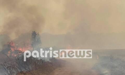 Φωτιά Αρχαία Ολυμπία: Εγκλωβισμένοι 4 κάτοικοι στα Βίλλια σε αγροικία - Eκκένωση του χωριού Μουριά
