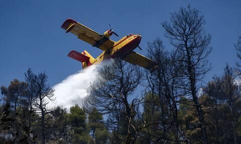 Φωτιά ΤΩΡΑ - Το μήνυμα της Πολεμικής Αεροπορίας: «Συνεχίζουμε για όσο χρειαστεί»