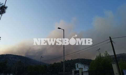 Φωτιά ΤΩΡΑ: Νέο μέτωπο στην Πετρούπολη - Συναγερμός στους κατοίκους, σπεύδουν εθελοντές στο βουνό