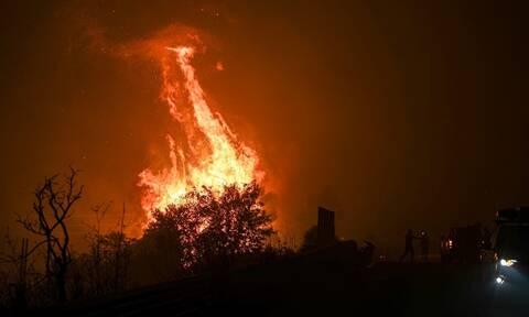 Φωτιά ΤΩΡΑ: Δραματικές στιγμές για παλαίμαχο της ΑΕΚ – Κάηκε ολοσχερώς το σπίτι του
