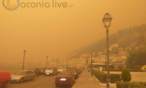 Φωτιά στο Γύθειο: Μάχη για να μην μπουν στην πόλη οι φλόγες - Ισχυροί άνεμοι στην περιοχή
