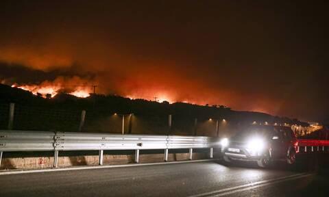 Φωτιά ΤΩΡΑ: Έφτασε στην Αθηνών – Λαμίας η πυρκαγιά – Απειλείται η Μαλακάσα
