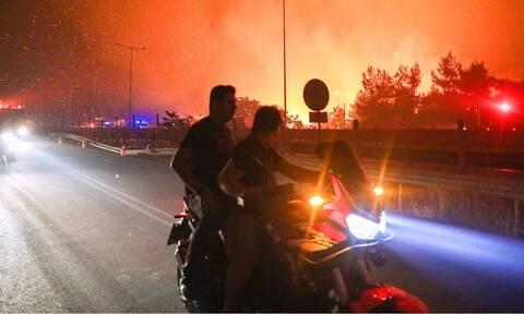Φωτιά ΤΩΡΑ: Πέρασε την Αθηνών – Λαμίας η πυρκαγιά – Κινδυνεύουν Μαλακάσα και Ωρωπός
