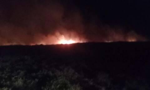 Φωτιά στη Λάρισα: Νέα πυρκαγιά ΤΩΡΑ στο Δίλοφο
