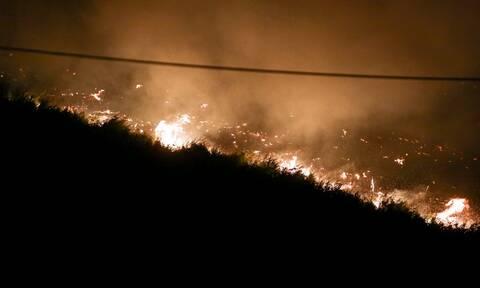 Φωτιά στην Εύβοια: Νέο μέτωπο προς Αιδηψό - Εκκενώσεις σε μοναστήρι και κατασκήνωση