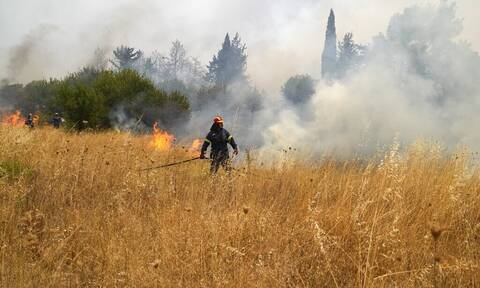 Φωτιά στην Κρήτη: Αντιμετωπίστηκε άμεσα πυρκαγιά στον αστικό ιστό του Ηρακλείου