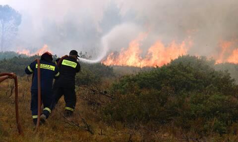 Φωτιά στην Αττική: Ενεργά μέτωπα σε Βαρυμπόμπη, Θρακομακεδόνες, Μαλακάσα - Ενισχύονται οι άνεμοι