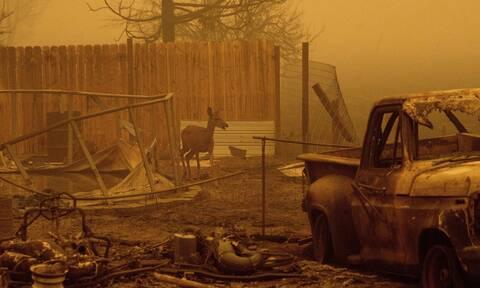 ΗΠΑ: Σαββατοκύριακο τρόμου στις δυτικές πολιτείες λόγω των ανεξέλεγκτων πυρκαγιών