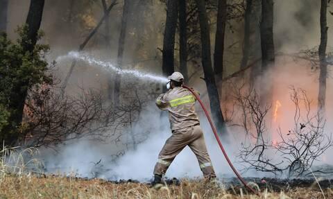 Φωτιές στην Ελλάδα: Τι μεταδίδουν τα διεθνή μέσα για τα πύρινα μέτωπα της χώρας