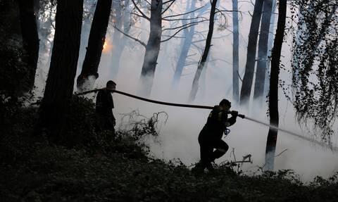 Φωτιά στην Εύβοια: Καλά στην υγεία του ο πυροσβέστης που τραυματίστηκε στη Λίμνη