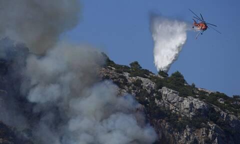 Φωτιές - Καθηγητής ΑΠΘ: Φωτιές σαν αυτές που ζούμε δεν τις καταστέλλει καμία πρόληψη