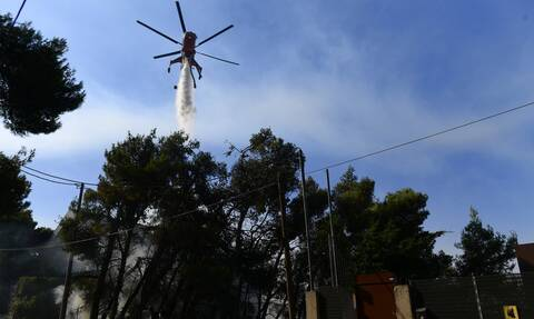 Φωτιές: Η Γερμανία στέλνει πυροσβέστες και οχήματα στην Ελλάδα