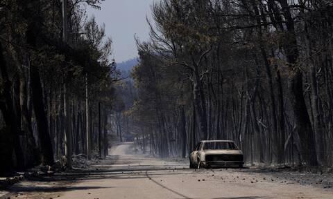 Συγκλονιστικός Μπακασέτας: «Είναι στιγμή να κλάψουμε για την Ελλάδα, να ζητήσουμε συγγνώμη»